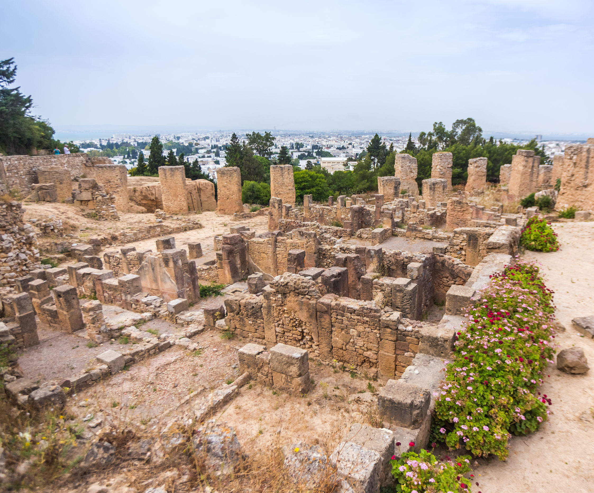 42315972 - tunisia. ancient carthage. ancient ruins in district of punic byrsa
