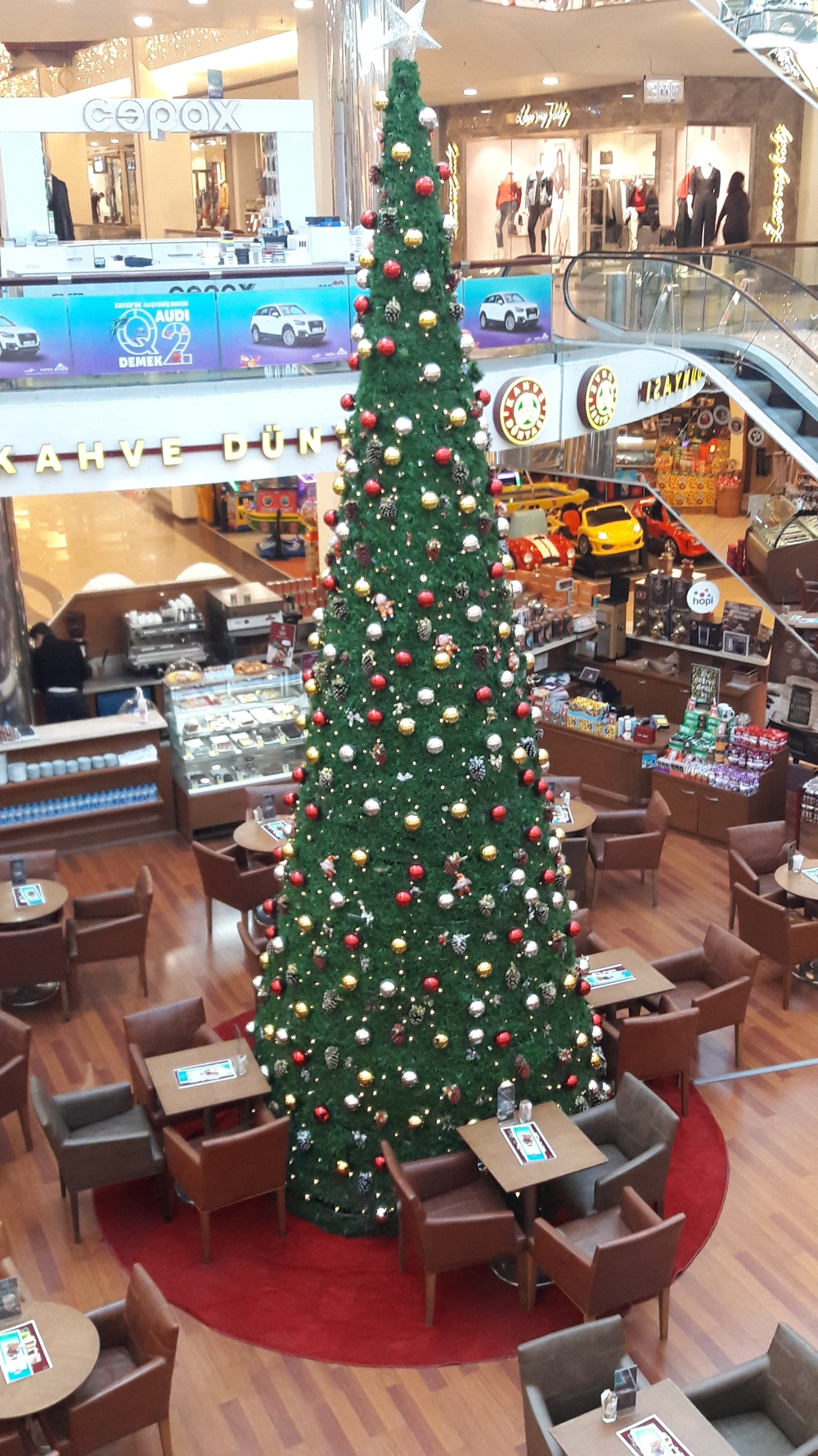 Bursa Christmas Tree